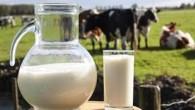Osbenefícios do leiteincluem o aumento da resistência óssea, pele mais suave, sistema imunológico mais forte, a prevenção de doenças como a hipertensão, a cárie dental, […]