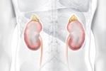 O cálculo renal pode provocar fortes dores e geralmente exige atenção rápida dos médicos. Saiba como evitar ou remediar essa encrenca. Estamos falando deuma condição […]