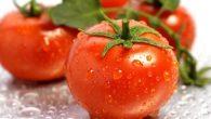 Otomateé um fruto de formato arredondado e de cor vermelha. Esse fruto é rico emlicopeno, um agente antioxidante e anticancerígeno que intervém nas reações em […]