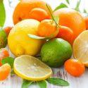 As frutas ácidas como a laranja, o abacaxi ou o morango, por exemplo, são ricas em vitamina C, fibras e potássio, e também são conhecidas […]